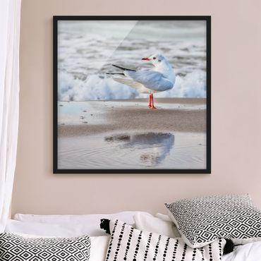 Bild mit Rahmen - Möwe am Strand vor Meer - Quadrat 1:1