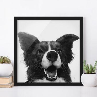 Bild mit Rahmen - Illustration Hund Border Collie Schwarz Weiß Malerei - Quadrat 1:1