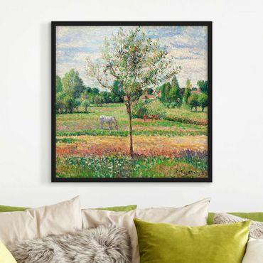 Bild mit Rahmen - Camille Pissarro - Wiese mit Schimmel - Quadrat 1:1
