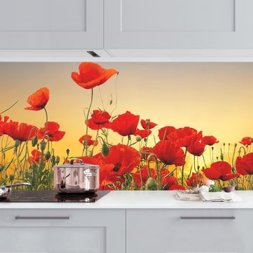 Küchenrückwand - Mohnblumenfeld im Sonnenuntergang