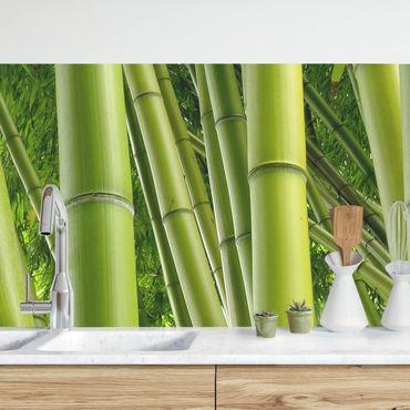 Küchenrückwand - Bamboo Trees No.1