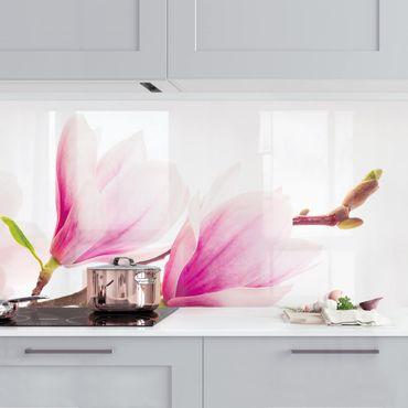 Küchenrückwand - Zarter Magnolienzweig