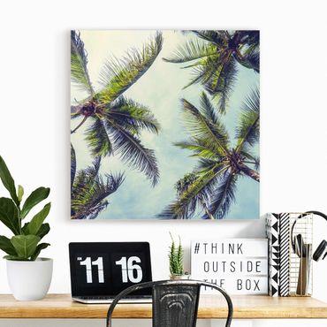 Glasbild - Die Palmen - Quadrat