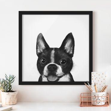 Bild mit Rahmen - Illustration Hund Boston Schwarz Weiß Malerei - Quadrat 1:1