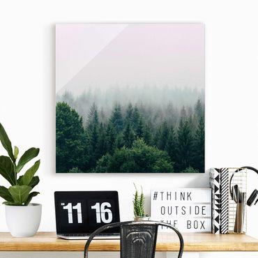 Glasbild - Wald im Nebel Dämmerung - Quadrat