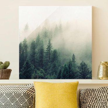 Glasbild - Wald im Nebel Erwachen - Quadrat
