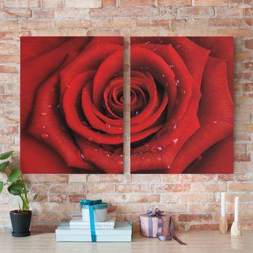 Leinwandbild 2-teilig - Rote Rose mit Wassertropfen - Hoch 3:4