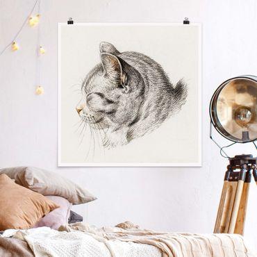 Poster - Vintage Zeichnung Katze III - Quadrat 1:1