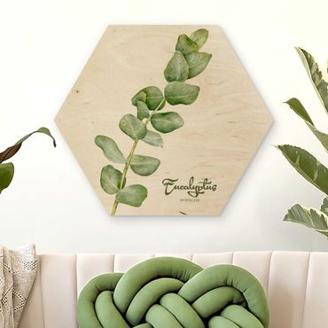 Hexagon Bild Holz - Aquarell Botanik Eukalyptus