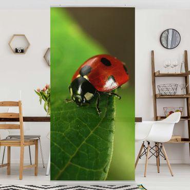 Raumteiler Kinderzimmer - Lady Bird 250x120cm
