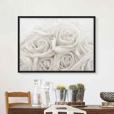 Bild mit Rahmen - Weiße Rosen - Querformat 3:4
