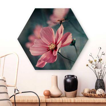 Hexagon Bild Holz - Marienkäfer beim Start