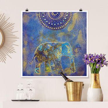 Poster - Elephant in Marrakech - Quadrat 1:1