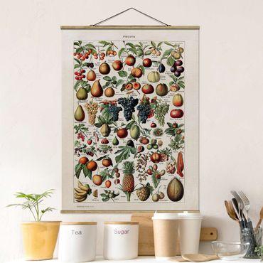 Stoffbild mit Posterleisten - Vintage Lehrtafel Früchte - Hochformat 4:3