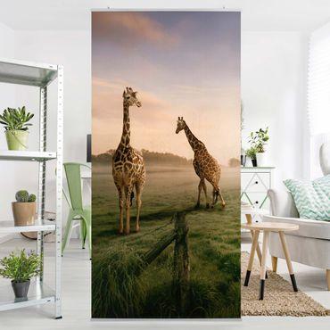 Raumteiler - Surreal Giraffes 250x120cm