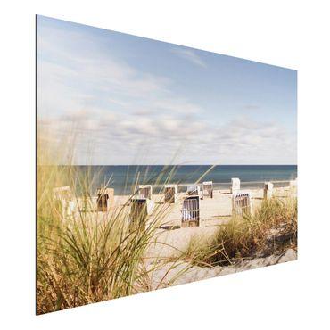 Alu-Dibond Bild - Ostsee und Strandkörbe