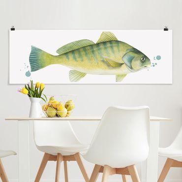 Poster - Farbfang - Flussbarsch - Panorama Querformat