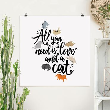 Poster - All you need is love and a cat - Quadrat 1:1