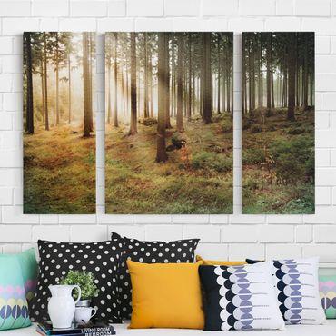 Leinwandbild 3-teilig - No.CA48 Morning Forest - Triptychon