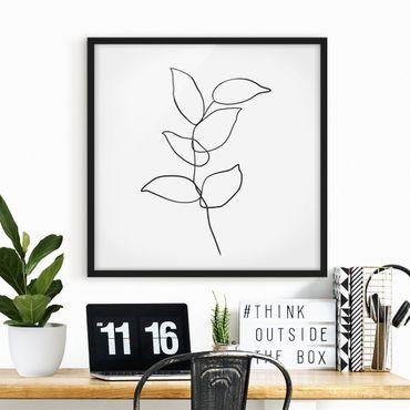Bild mit Rahmen - Line Art Zweig Schwarz Weiß - Quadrat 1:1