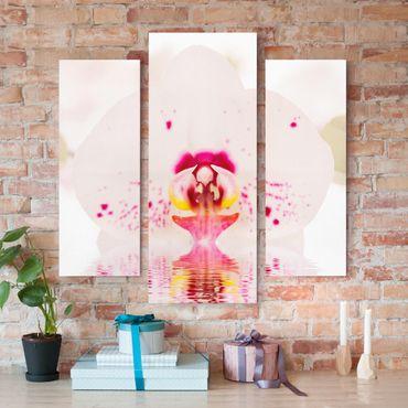 Leinwandbild 3-teilig - Gepunktete Orchidee auf Wasser - Galerie Triptychon