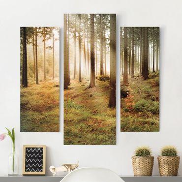 Leinwandbild 3-teilig - No.CA48 Morning Forest - Galerie Triptychon