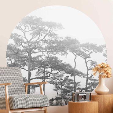 Runde Tapete selbstklebend - Baumkronen im Nebel Schwarz Weiß