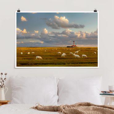 Poster - Nordsee Leuchtturm mit Schafsherde - Querformat 2:3