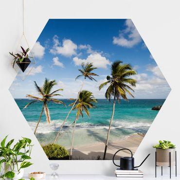 Hexagon Mustertapete selbstklebend - Beach of Barbados