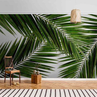 Metallic Tapete  - Blick durch grüne Palmenblätter