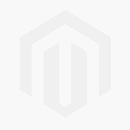 Schiebegardinen Set - Blick durch Palmenblätter schwarz weiß - Flächenvorhang