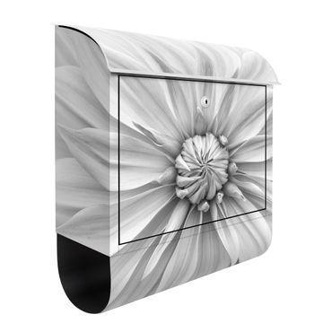 Briefkasten - Botanische Blüte in Weiß