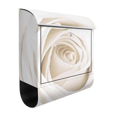 Rosen Briefkasten mit Zeitungsfach - Pretty White Rose - Briefkasten Blumenprint