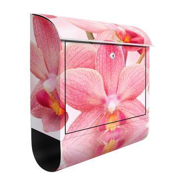 Briefkasten mit Zeitungsfach - Rosa Orchideen auf Wasser - Briefkasten Blumen