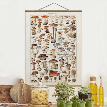 Stoffbild mit Posterleisten - Vintage Lehrtafel Pilze - Hochformat 4:3