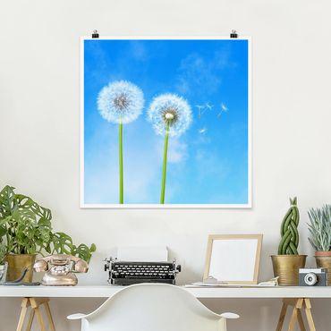 Poster - Flying Seeds - Quadrat 1:1