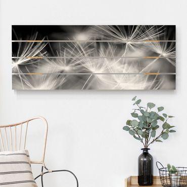 Holzbild - Bewegte Pusteblumen Nahaufnahme auf schwarzem Hintergrund - Querformat 2:5