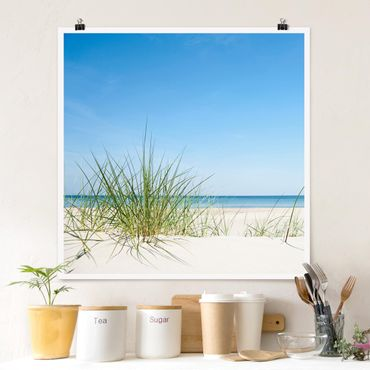 Poster - Ostseeküste - Quadrat 1:1
