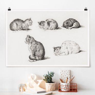 Poster - Vintage Zeichnung Katze I - Querformat 2:3