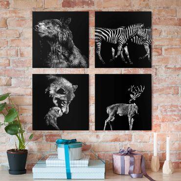 Leinwandbild 4-teilig - Wildtiere vor Schwarz Set I
