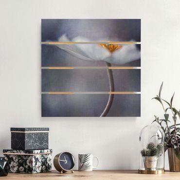Holzbild - Weiße Anemonenblüte - Quadrat 1:1