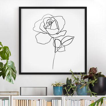 Bild mit Rahmen - Line Art Rose Schwarz Weiß - Quadrat 1:1