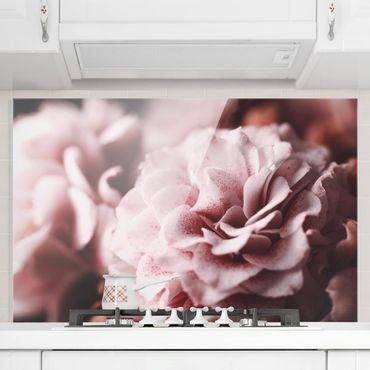 Spritzschutz Glas - Shabby Rosa Rose Pastell - Querformat 2:3
