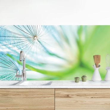 Küchenrückwand - Abstrakte Pusteblume