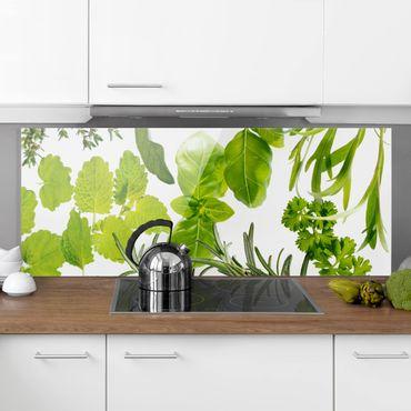 Spritzschutz Glas - Verschiedene Kräuter - Panorama - 5:2