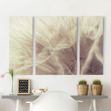 Leinwandbild 3-teilig - Detailreiche Pusteblumen Makroaufnahme mit Vintage Blur Effekt - Triptychon