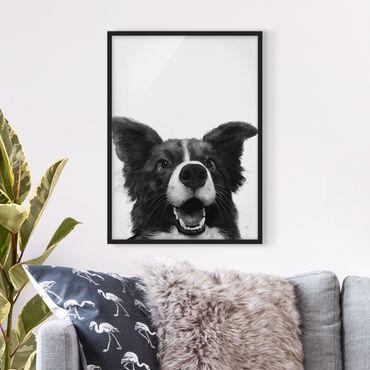 Bild mit Rahmen - Illustration Hund Border Collie Schwarz Weiß Malerei - Hochformat 4:3