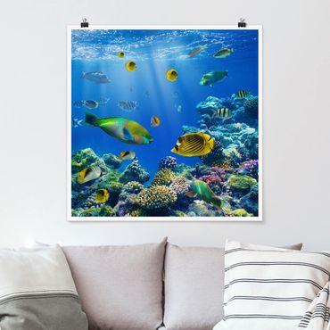 Poster - Underwater Lights - Quadrat 1:1