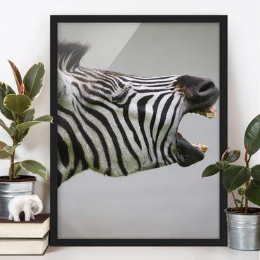 Bild mit Rahmen - Brüllendes Zebra - Hochformat 3:4
