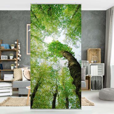 Raumteiler - Bäume des Lebens 250x120cm